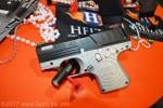 GunLink_SHOT17_0309